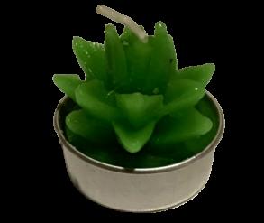 Свічка кактус 0536